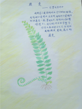 201629