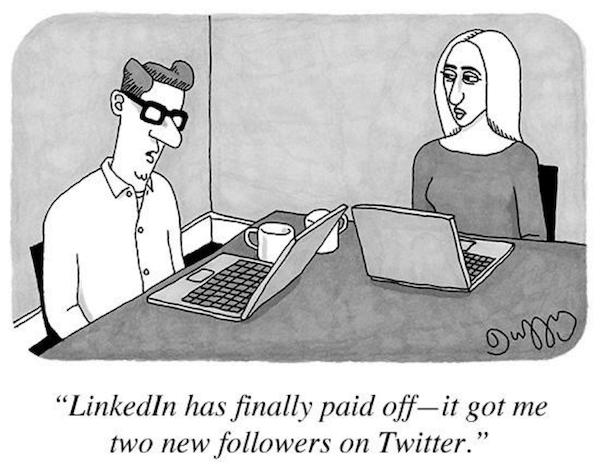 LinkedIn 终于产生回报了——我的博客上又多了两个新粉丝